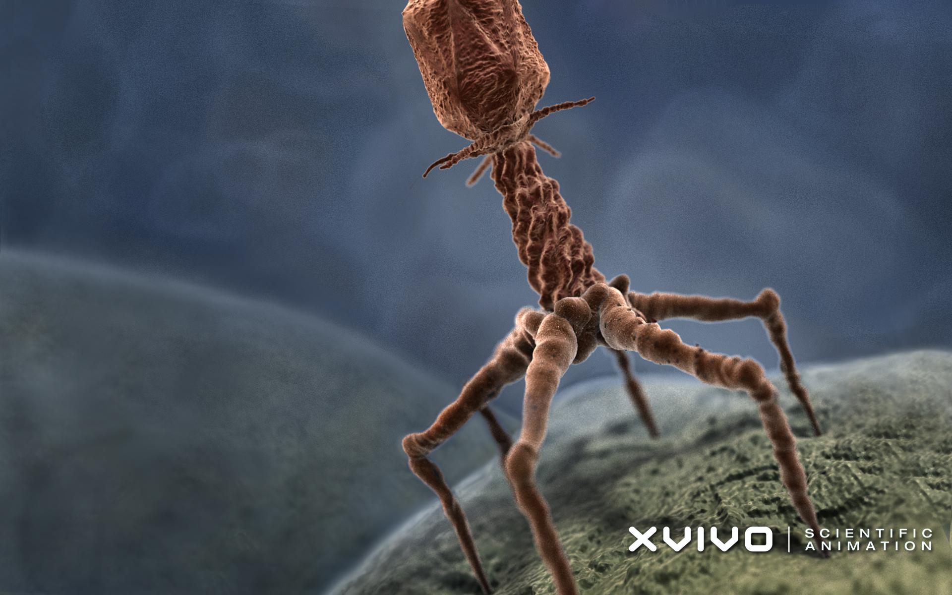 bacteriophage21920x1200